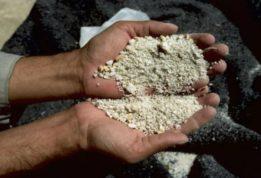 полиция нашла 20 килограммов кокаина