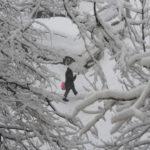 В Москве за сегодня выпадет более 20 процентов месячной нормы осадков