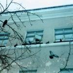 В столице мужчина разбился, выбросившись из окна больницы