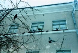 мужчина выпал из окна