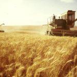 Украина захватила ключевые рынки сбыта зерна России