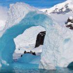 Ученые рассказали о загадочных существах, проживающих в Антарктиде