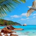 Романтические путешествия Tourism-Info