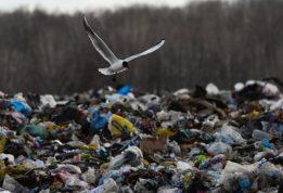 """трое лиц попали под мусорную """"лавину"""""""